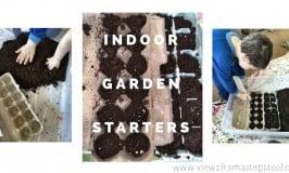 Repurposing Egg Cartons for Indoor Garden Starters