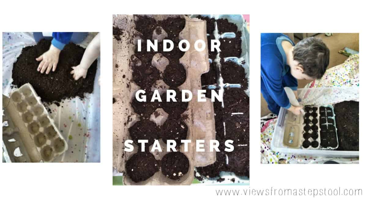 Repurposing Egg Cartons for Indoor Garden Starters