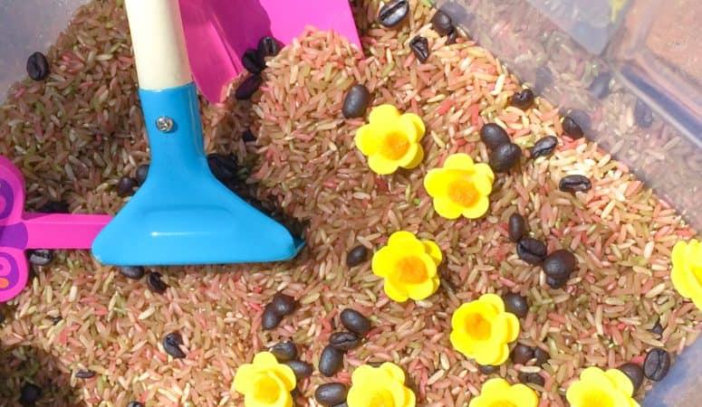 Garden Sensory Bin for Outdoor or Indoor Play