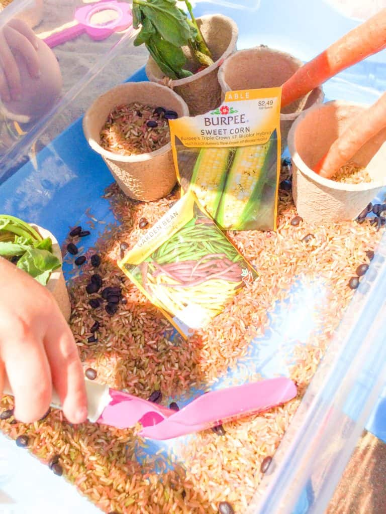 Garden Sensory Bin for Outdoor or Indoor Play - Views From a Step Stool