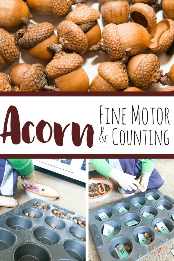 Acorn fine motor pin-2