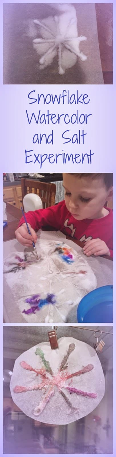 Simple Snowflake Craft: Painting Salt with Watercolors