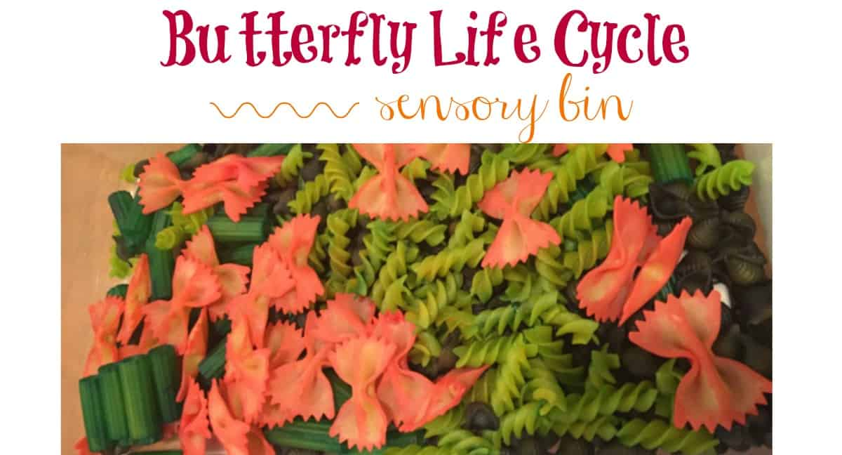 Butterfly Life Cycle Sensory Bin