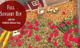 Fall Sensory Bin With The Schleich Chicken Coop