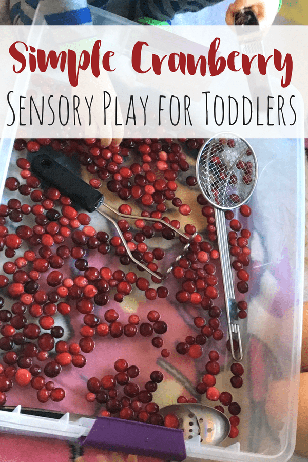 Make an indoor cranberry bog for some simple science and cranberry sensory play with kids! A hands-on activity like this will leave an impression!