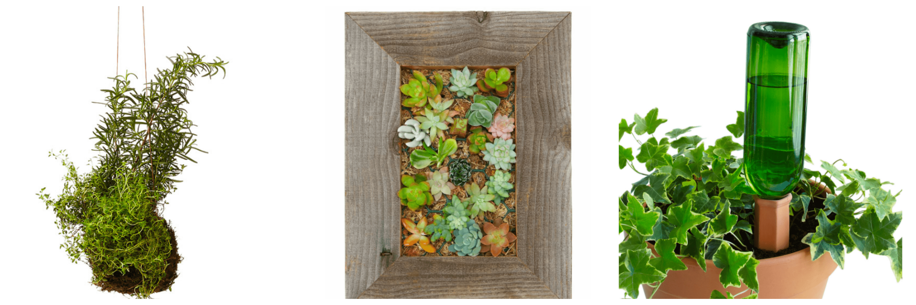 Looking for eco-friendly mother's day gifts that mom will love? These gifts that leave the world a better place for her kids!