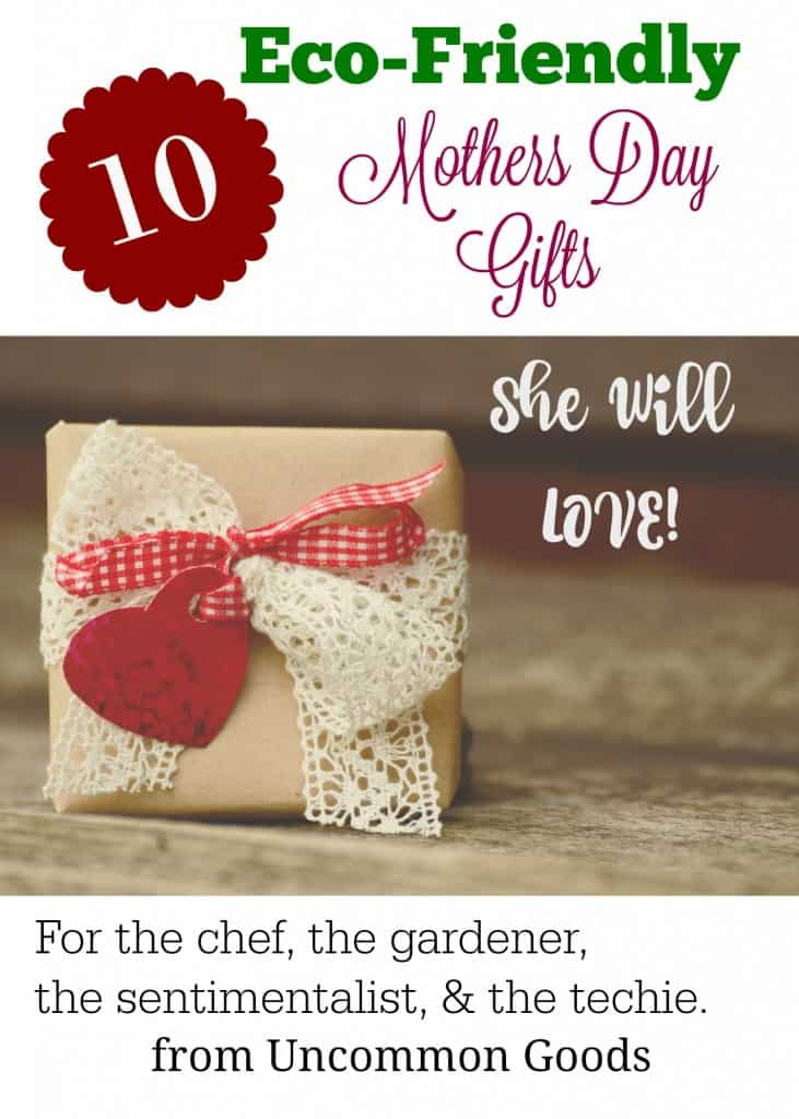 eco-friendly mothers day gifts pin