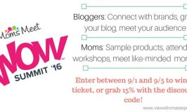 Is the Moms Meet WOW Summit for You?