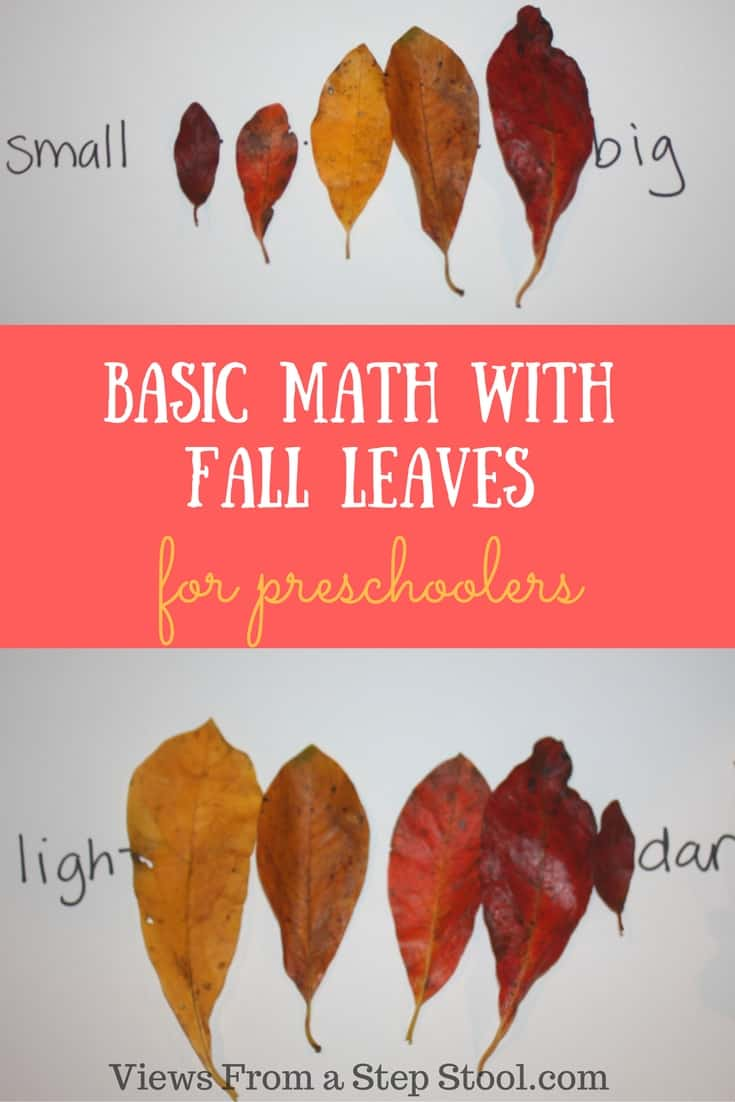 basic preschool math with fall leaves views from a step stool