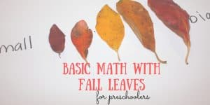 Basic Math with Fall Leaves for Preschoolers