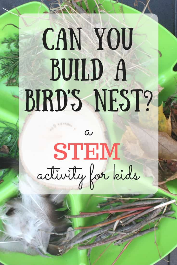 Can you build a nest? This build a nest challenge for kids gets kids thinking creatively and applying imagination to science! Perfect for any age!