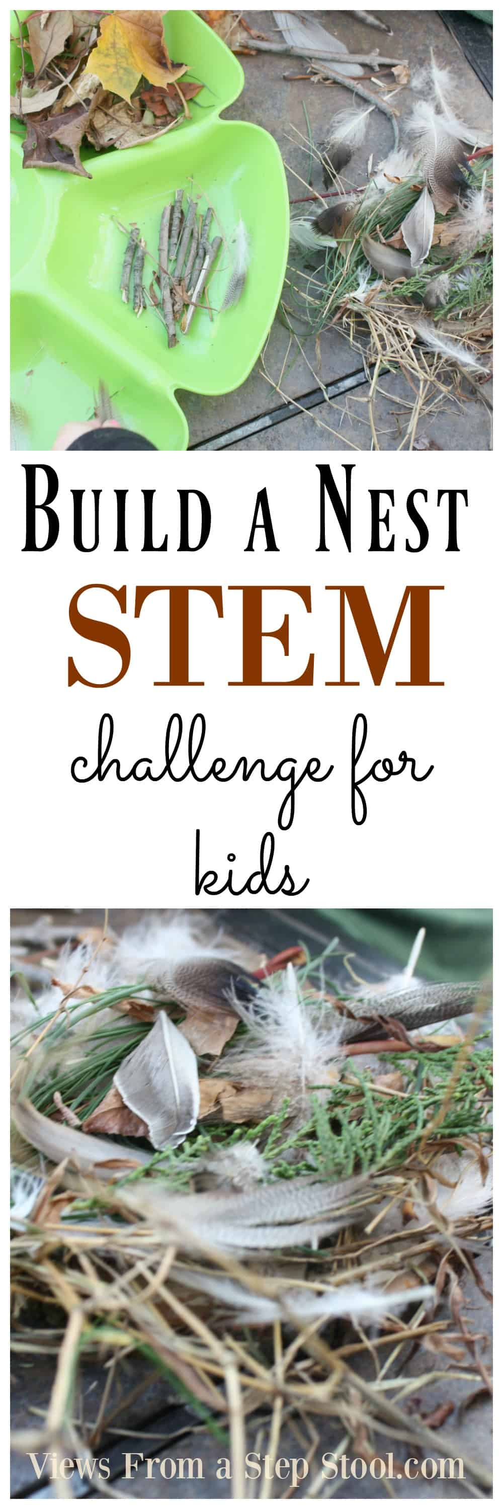 Can you build a nest? This STEM challenge for kids gets kids thinking creatively and applying imagination to science!