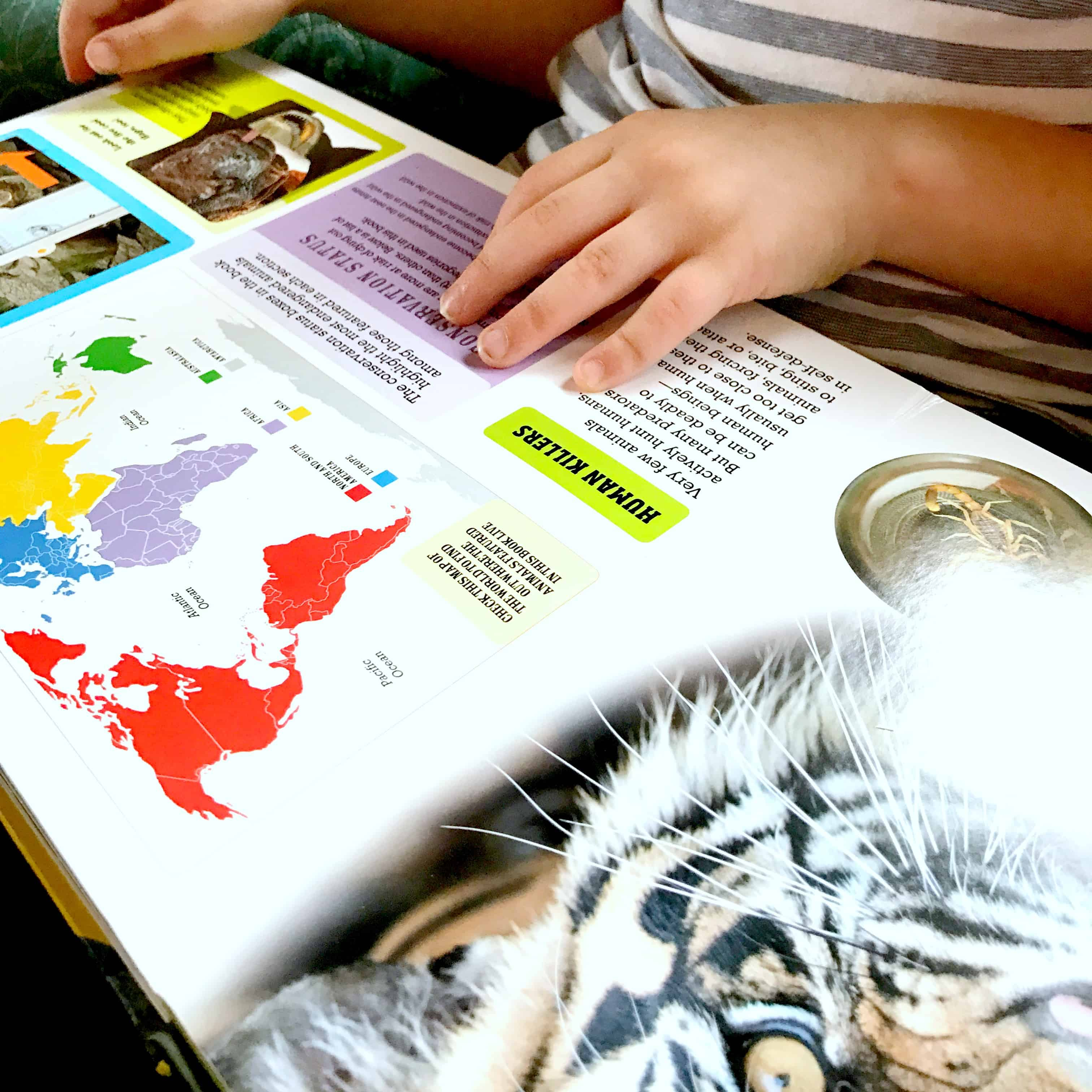 The Scanorama series is an amazing series of interactive books for animal lovers. They provide fun learning and an up-close view of awesome animals.
