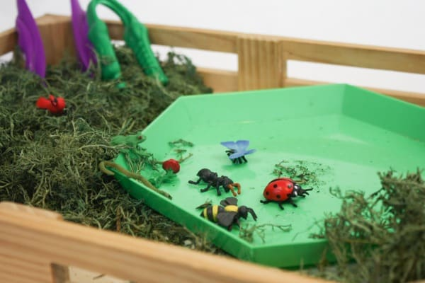 Fine Motor Bug Activity for Preschoolers