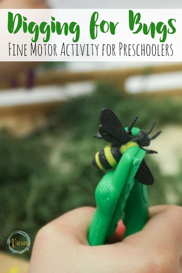 Fine Motor Bug Activity For Preschoolers Views From A
