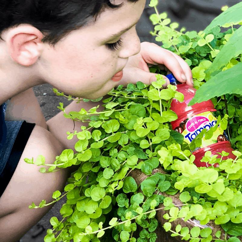 boy finding juice bottle in bushes