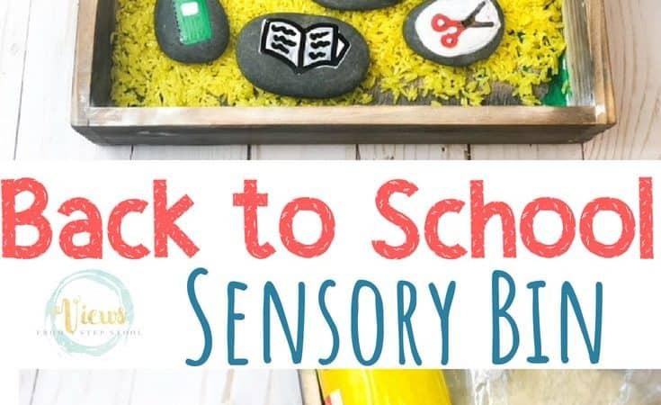 Back to School Sensory Bin with Painted Rocks