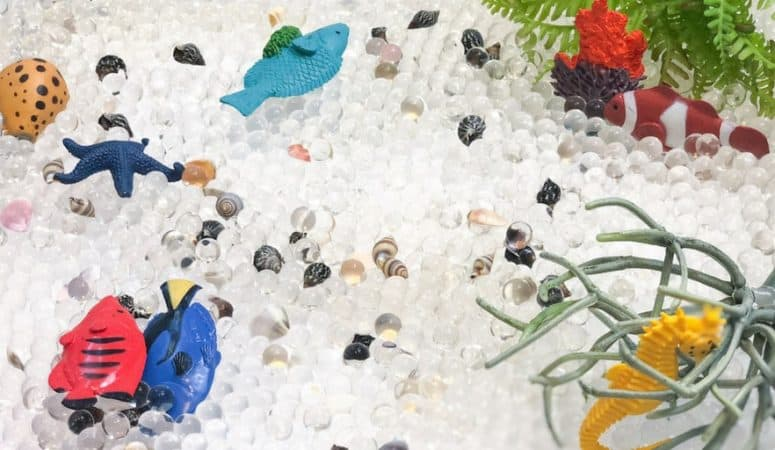 Coral Reef Sensory Bin with Water Beads