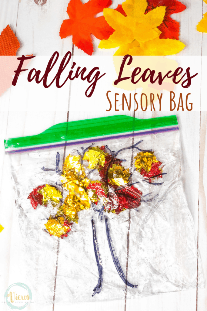 4 Fall Sensory Bags For Babies And Toddlers Views From A