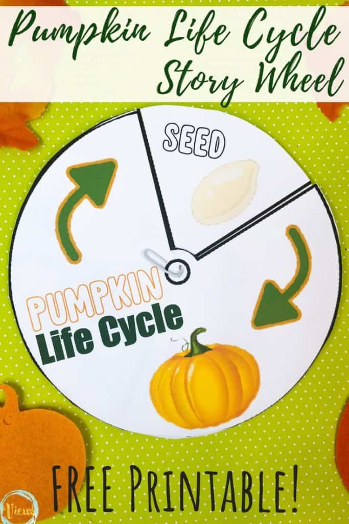 pumpkin life cycle story wheel printable for kids