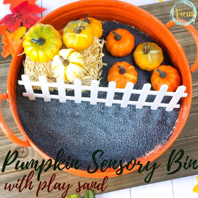 Pumpkin Sensory Bin With Modifications By Age Views From