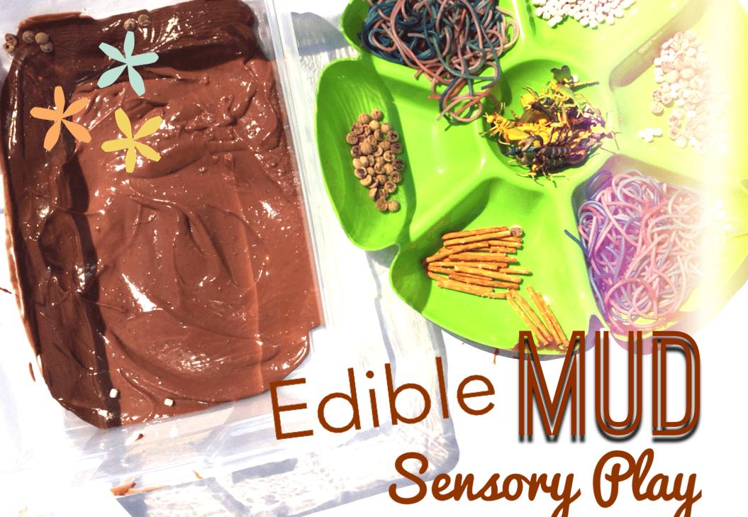 Edible Garden Sensory Bin