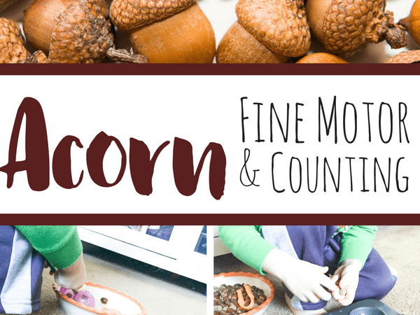 Acorn Fine Motor and Counting