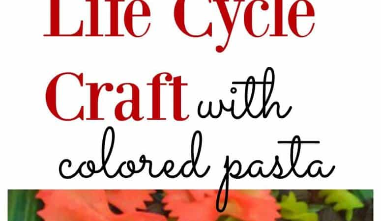 Butterfly Life Cycle Craft with Pasta