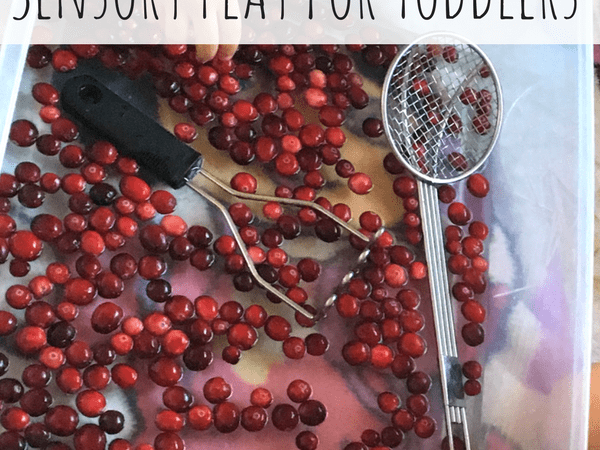 Cranberry Sensory Play for Toddlers
