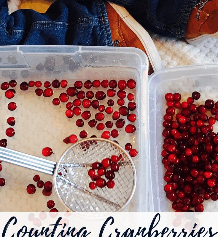 cranberry sensory bin preschool