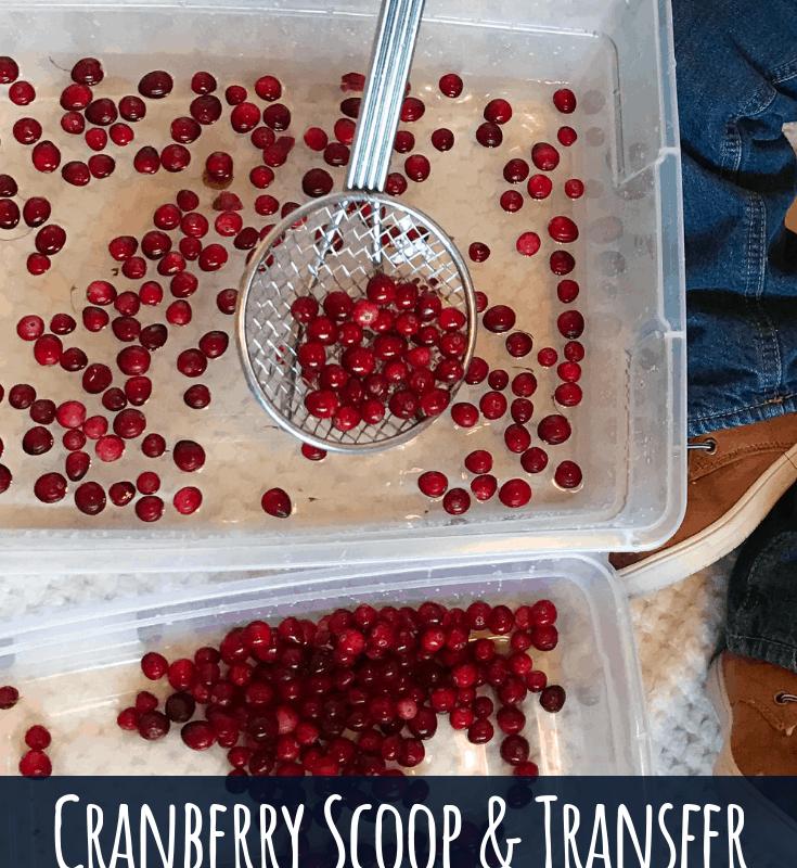 cranberry sensory bin toddler