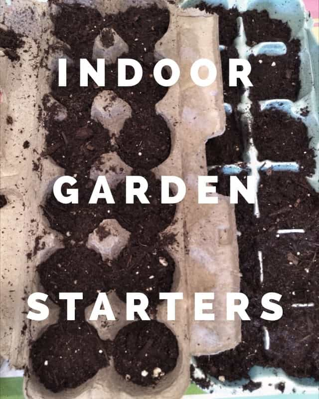 6 Ways to Start Seeds Indoors from Recycled Materials