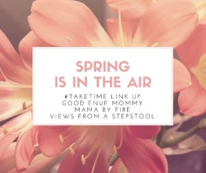 The April #TAKETIME Link up theme is Spring is in the Air! Come check out some fabulous posts from some of the best bloggers, and get inspired this Spring!