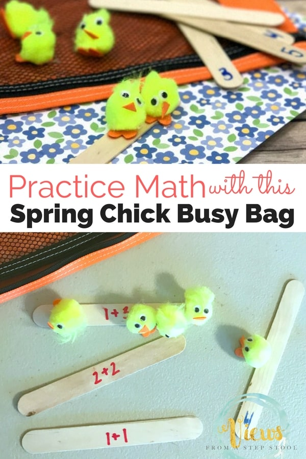 Counting Chicks Busy Bag Pin 2-2