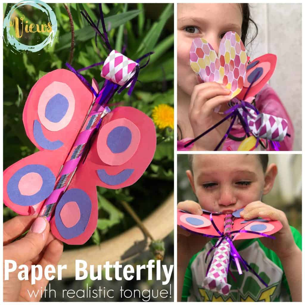 paper butterfly square FB
