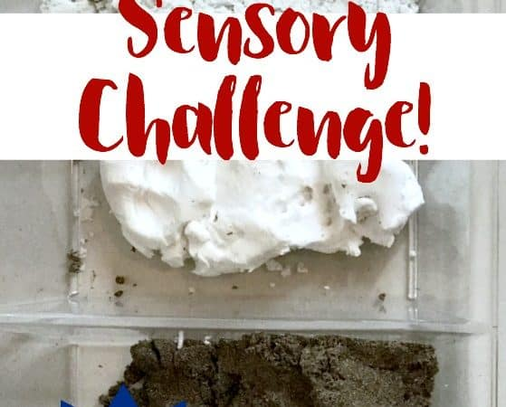 #PlayVision Sensory Challenge: Sands Alive, Floof & Play Dirt