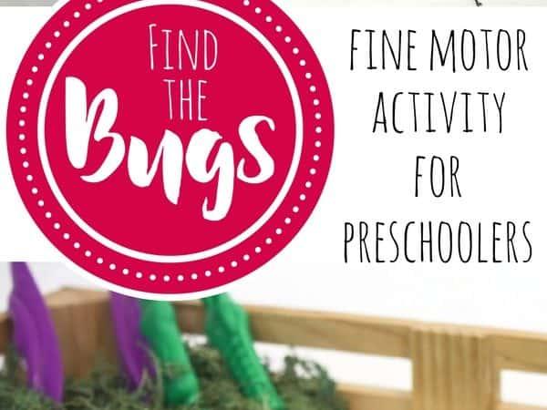 Fine Motor Bug Activity for Preschoolers