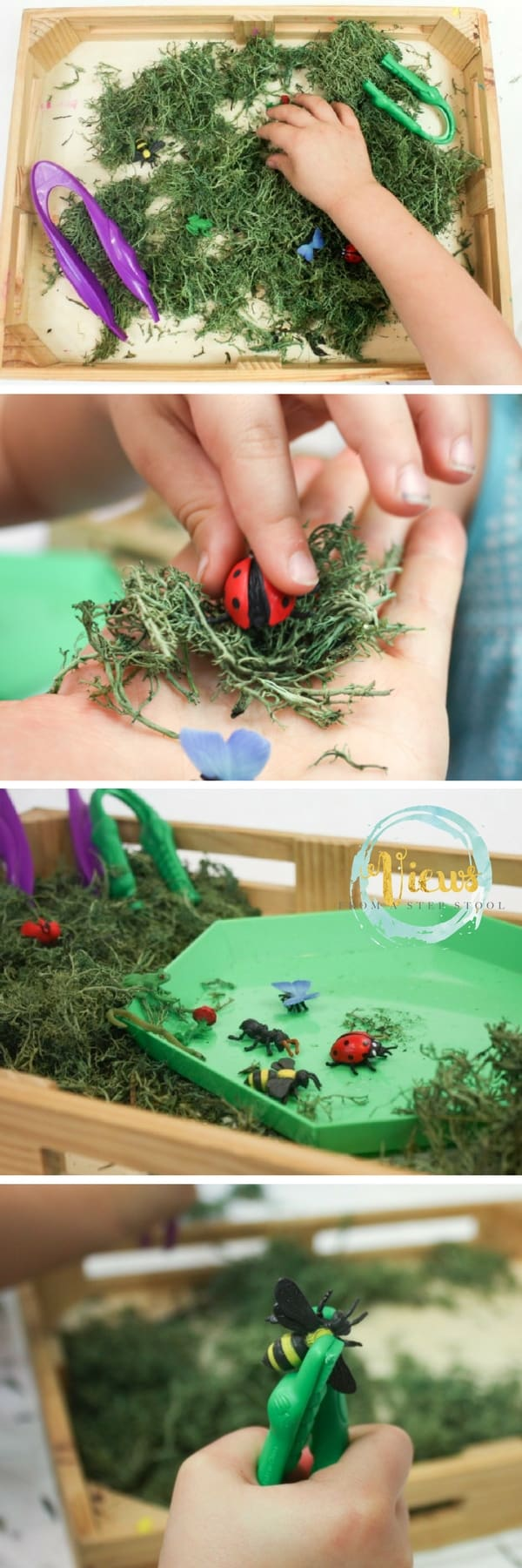 This bug activity for preschoolers is perfect for fine motor skills. Little learners will enjoy hunting for and finding bugs, and perfecting their skills!