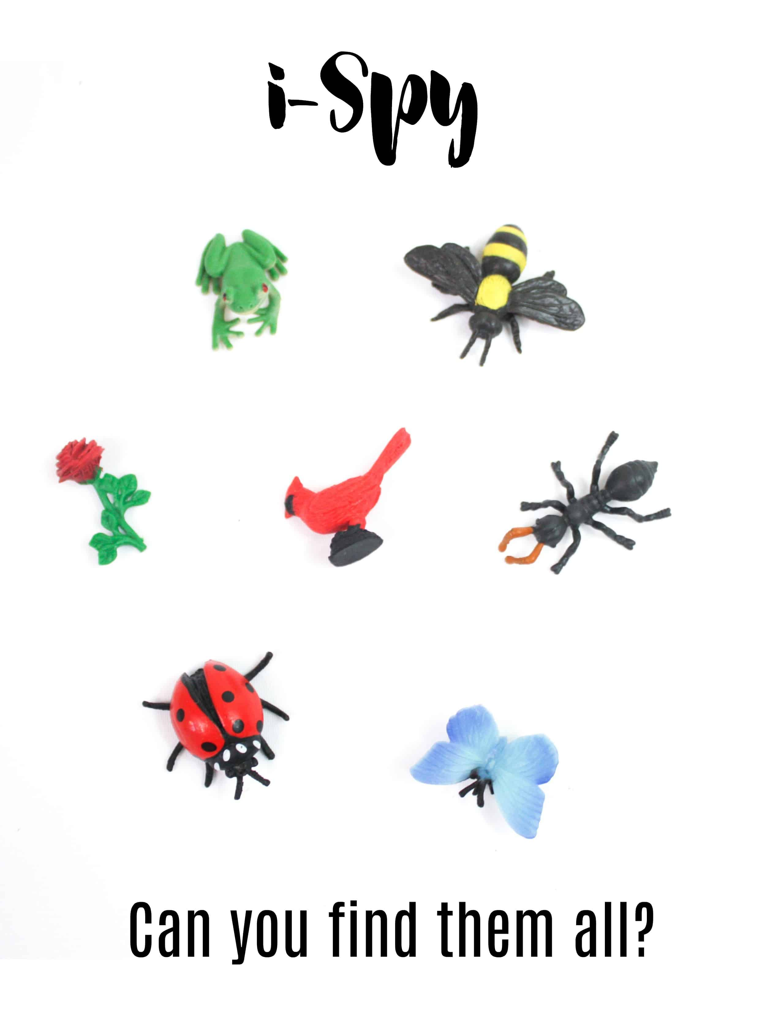 bug i spy busy bag printable