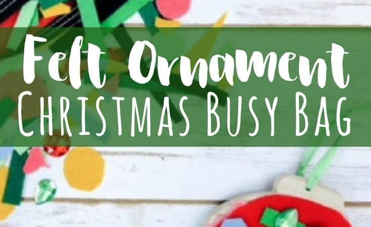 Felt Ornament Christmas Busy Bag