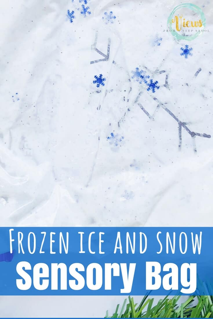 Ice and Snow Winter Sensory Bag for Toddlers