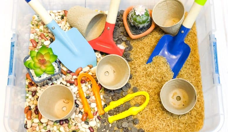 Dig and Plant Indoor Garden Sensory Bin (plus a sweet treat!)
