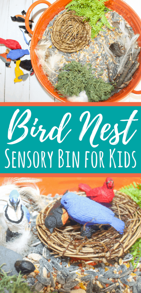 This birds sensory bin uses bird seed as a base and materials for nest building. The birds included in this sensory bin are great for play. #sensory #spd #sensorybin #kidsactivities #preschool #toddlers #birds #birdnest