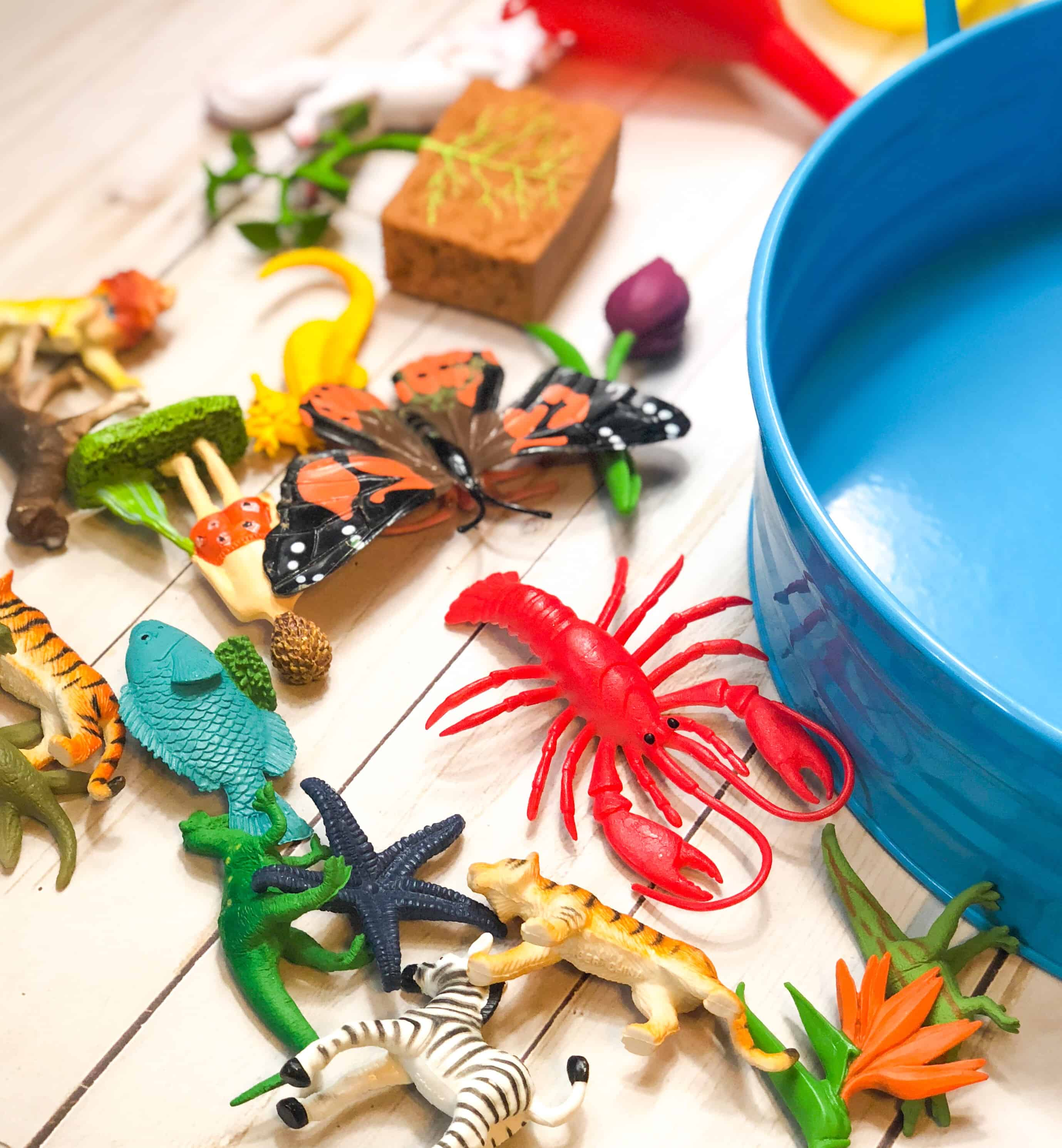 The formula for the perfect sensory bin. Everything you need to know about making these for kids, and exactly what sensory bin tools you should be using.