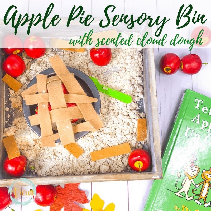 apple pie sensory bin square