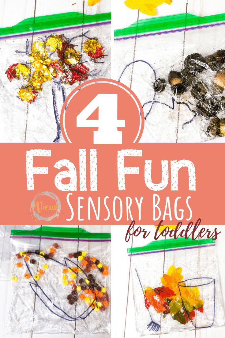 4 Fall Sensory Bags for Babies and Toddlers