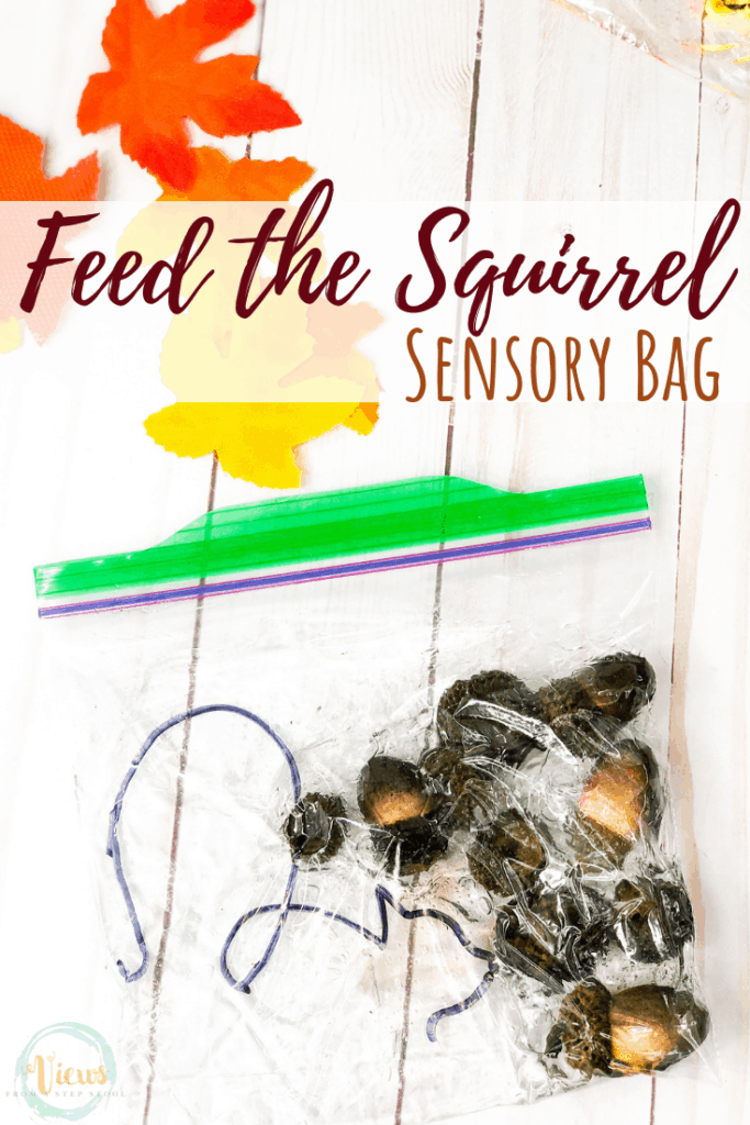 fall sensory bags pin 3