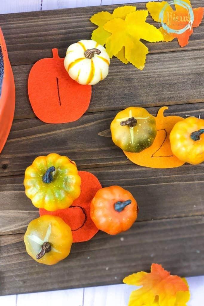 fake pumpkins and felt pumpkins
