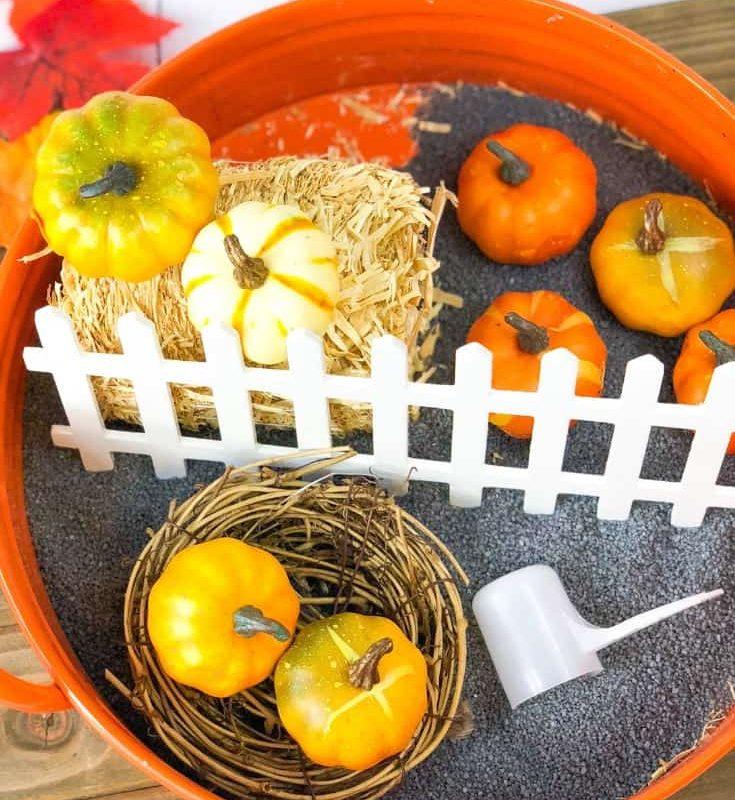 pumpkin_sensory_bin__L3lmK