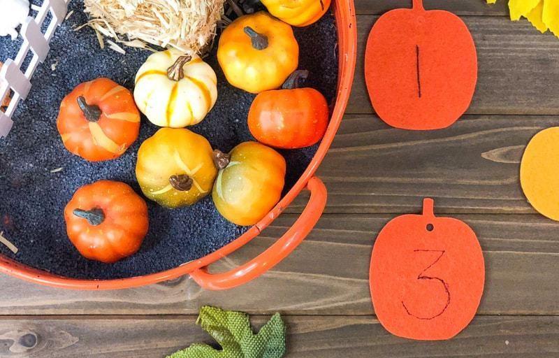 pumpkin_sensory_bin__SNkMp